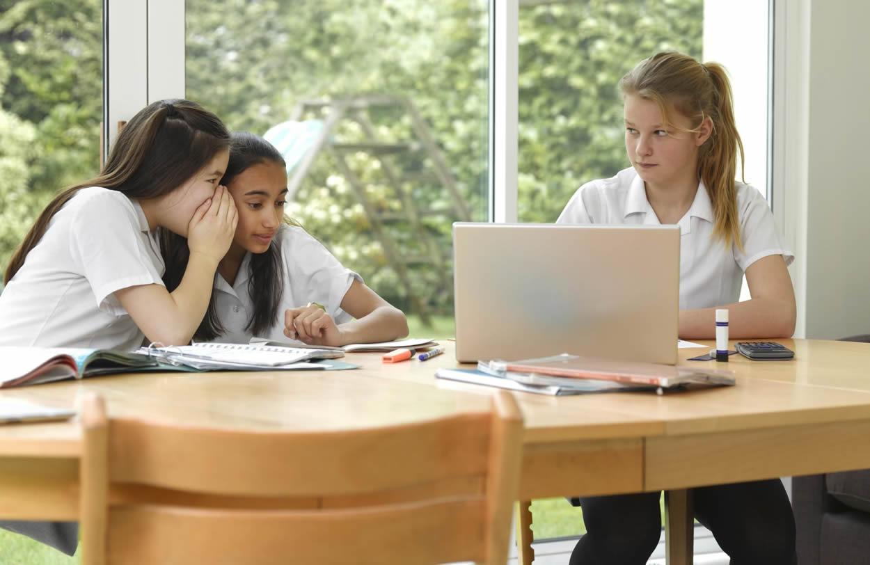 ¿Formas parte del cyberbullying?