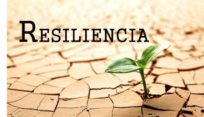 Cápsula – La resiliencia